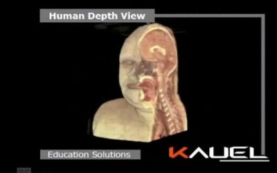 KAUEL LAUNCHES SOFTWARE TO NAVIGATE THROUGHOUT THE HUMAN BODY